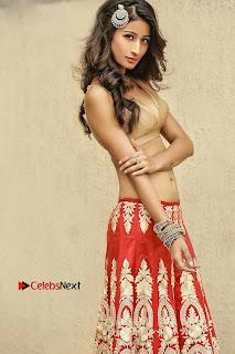 Actress Model Shivalika Sharma Latest HD Portfolio Stills  (5).jpg