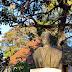 estátua de Reis Gomes no Jardim Muncipal