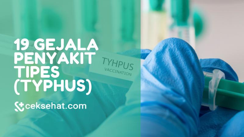 19-gejala-penyakit-tipes-tifus