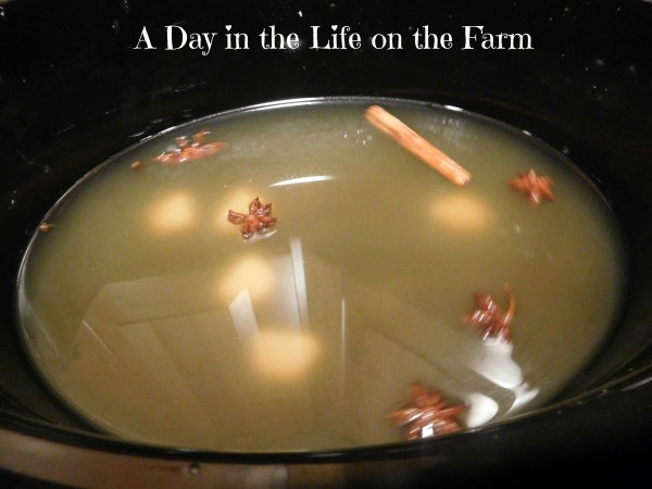 A Day in the Life on the Farm: Chicken Pho
