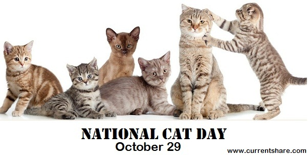 World Cat Day globally international cat day is in 29 october