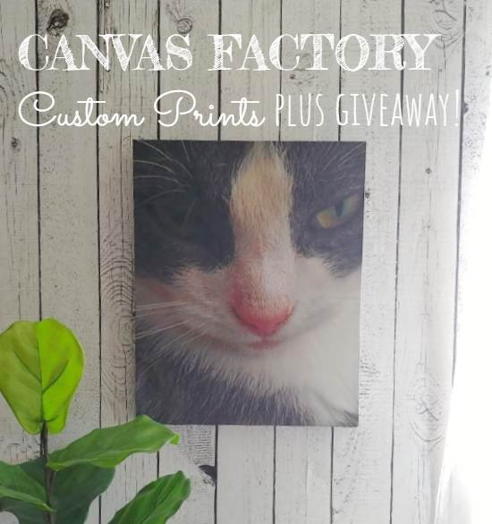 Canvas Factory Custom Prints Plus Giveaway!