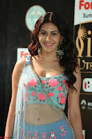 Amyra Dastur in Flower Print Choli Transparent Chunni at IIFA Utsavam Awards017.JPG