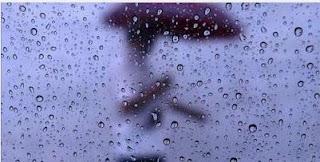 lluvia plesbicitaria