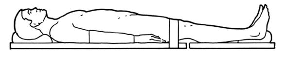 Supine / Anatomical Position