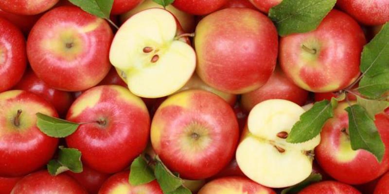 Stop !!! Jangan Buang Biji Saat akan Komsumsi Buah Apel