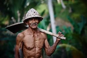 Cerita Moral  - Seorang Pria Tua Tinggal di Desa