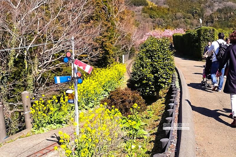 matsuda-sakura-33.jpg