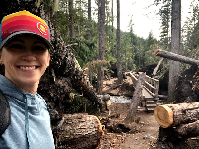 woman in front of bridge with felled trees everywhere