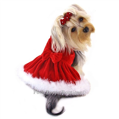 Elegant Red Velour Furry Dress