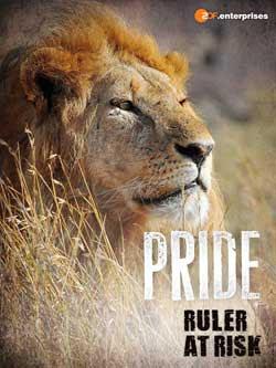 Pride - Ruler's at Risk (2016)