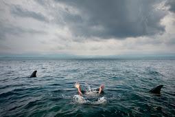 14 Trik Survival Yang Bisa Membantumu Bertahan Hidup Dalam Situasi Berbahaya