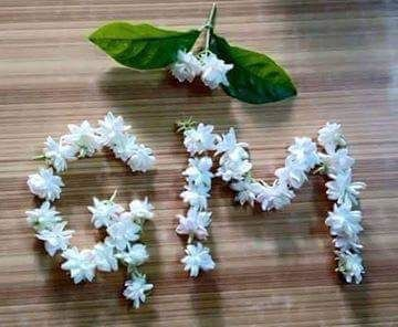 gm good morning flower decoration whatsapp