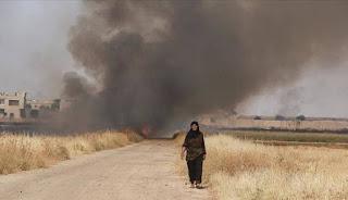 Pasukan Asad Bakar Ladang Sumber Pangan Warga Suriah