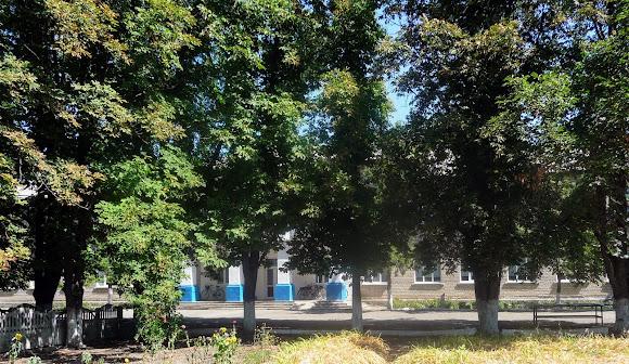 Васильківка. Район Низ. Вулиця Соборна. Школа
