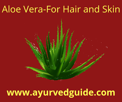 Aloe Vera Benefits Skin Hair