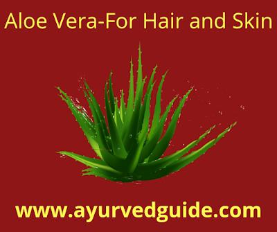 Aloe Vera Benefits Skin Hair