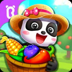 Little Panda's Dream Garden