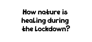 Nature is healing