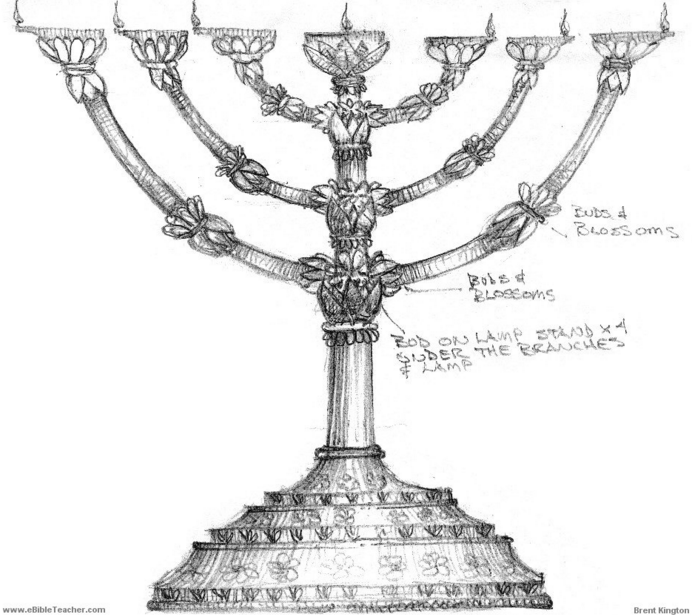 Torah Matters: The Menorah: God's Pattern for Giving Light