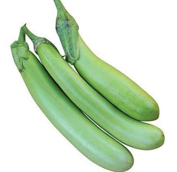 terong hijau