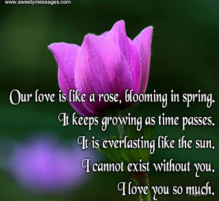 i love you quotes with images, romantic love images