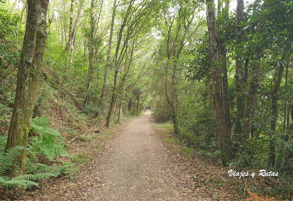 Vía verde del ferrocarril del Eo, San Tirso de Abres