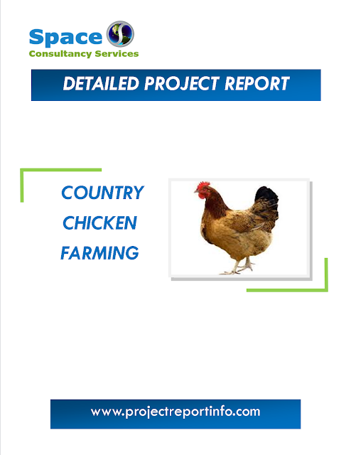 Project Report on Country Chicken Farming