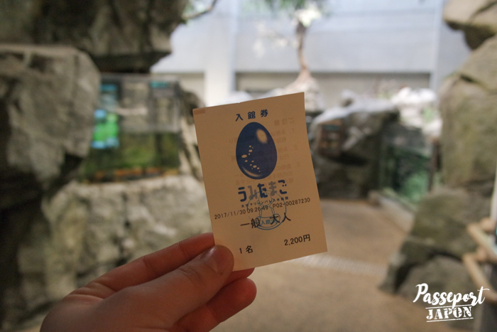 Billet d'entrée, aquarium Umi Tamago, Oita