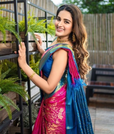 Nidhhi Agerwal Looks Super Hot in Red Saree | Nidhi Agerwal Super hot Saree Photo