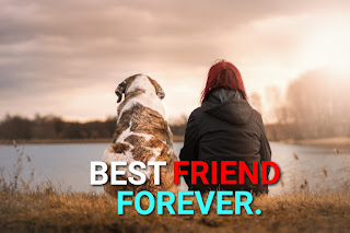Best Friend Forever.