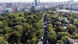 Árboles en la ciudad: reconocimiento a los pioneros de la silvicultura urbana sostenible