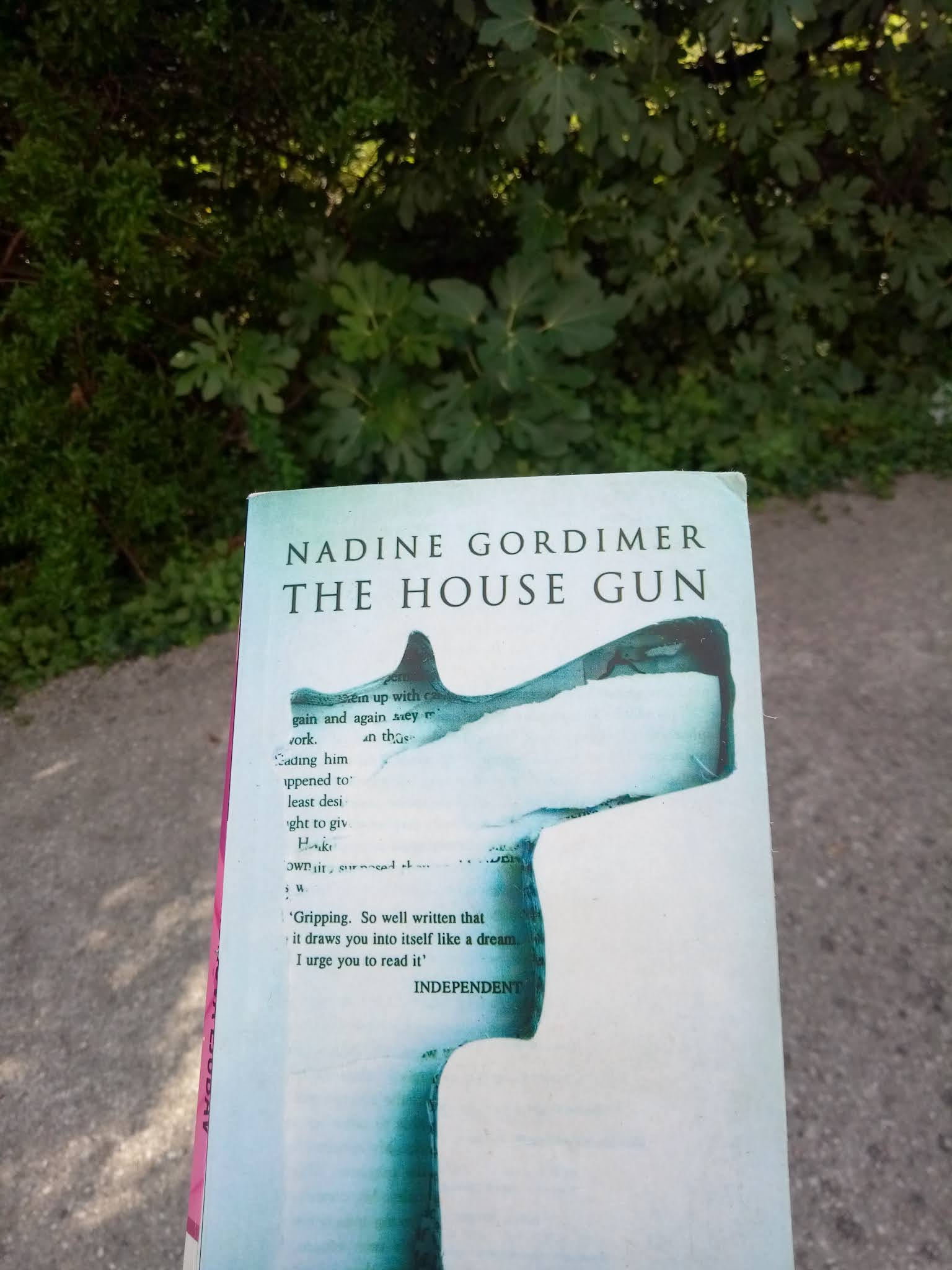THE HOUSE GUN BY NADINE GORDIMER & THE WRONG SIDE OF GOODBYE BY M.CONNELLY (BOOK REVIEWS)