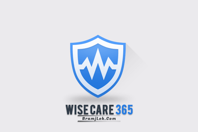 Download Wise Care 365 2022