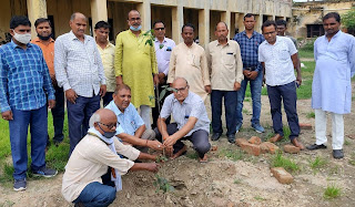 विद्यालय में शिक्षकों ने किया पौधरोपण  | #NayaSaberaNetwork