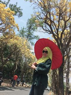 Yuntyas Menikmati Keindahan Pohon Sakura Di Jalanan Desa Pendem, Kota Batu