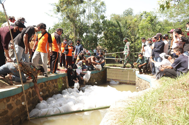 TILIK Wonopringo, Bupati Asip Sebar Benih Ikan
