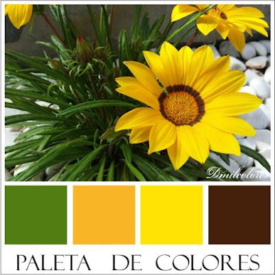 combinación_de_colores