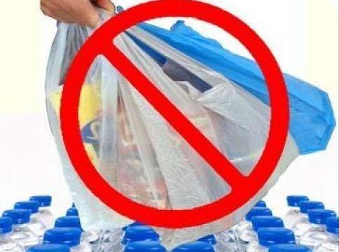प्लास्टिक प्रदुषण रोकने के लिए हमें प्रकृति की ओर देखना होगा