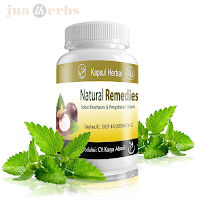 Obat Herbal Natural Remedies