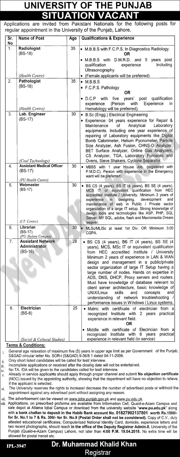 Latest New PU Jobs in University of the Punjab