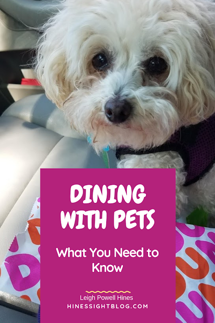 Dining with Pets in Restaurants: What Pet Owners Need to Know. #pets #dogs #pettravel