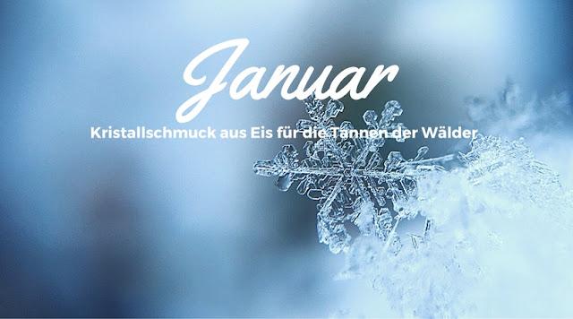 januar, jänner, katerstimmung, der erste tag des jahres, neujahr, jahresbeginn, eiskristalle, wald, tannen, winter, frostige stimmung, laune, poesie blog, silberstunden, poetisch, texte, lyrik, schreiben, writing, bild, foto