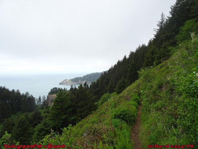 Neahkahnie Mountain Loop Hike