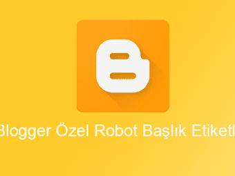 Blogger Özel Robot Başlık Etiketleri