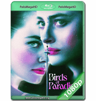 AVES DEL PARAÍSO (2021) WEB-DL 1080P HD MKV ESPAÑOL LATINO