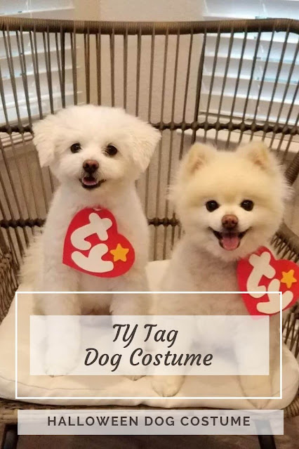 TY Tag Dog Costume