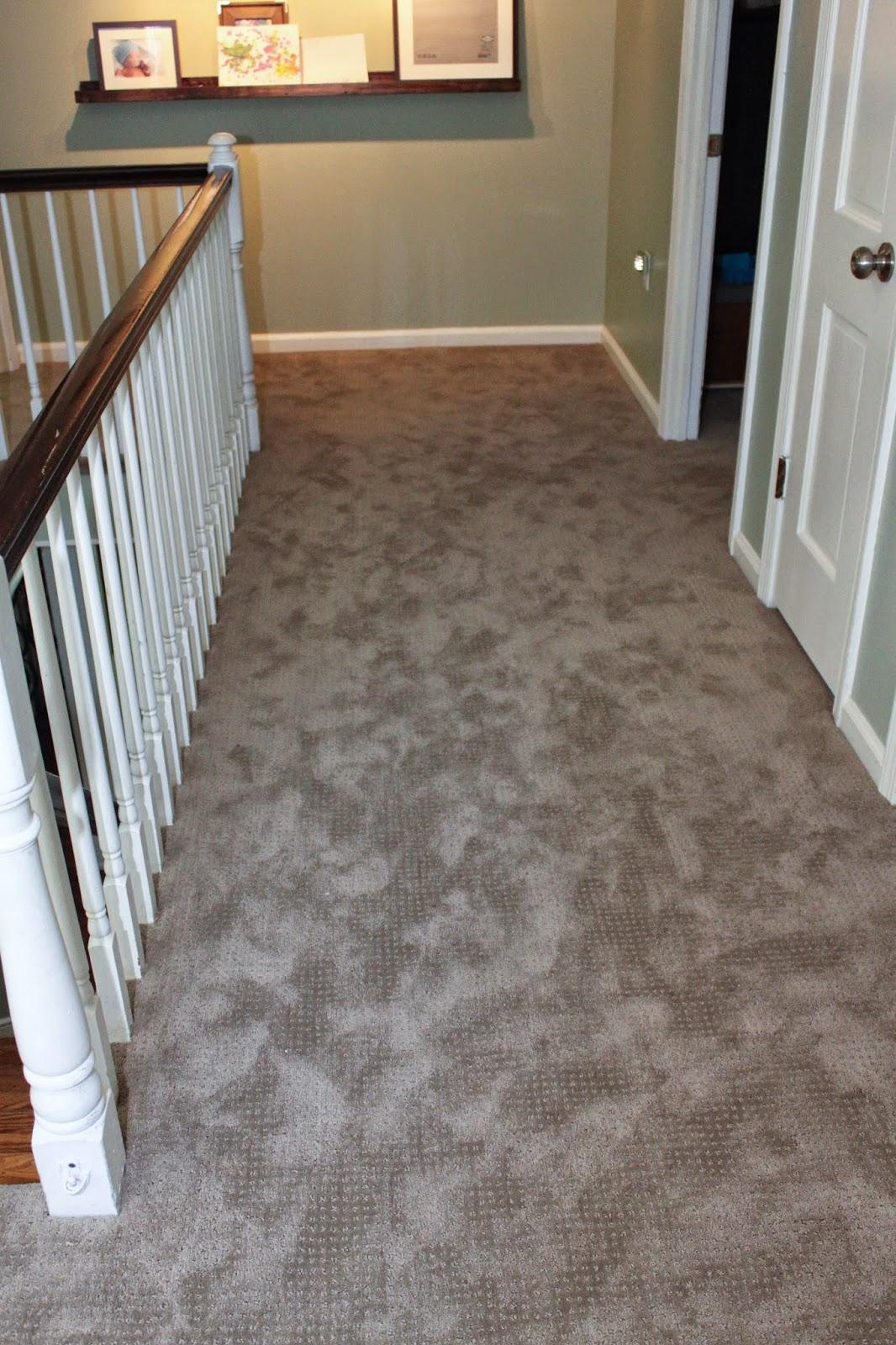 Meg Amp The Martin Men Carpet