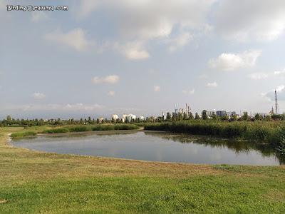 Vista d'un dels quatre estanys