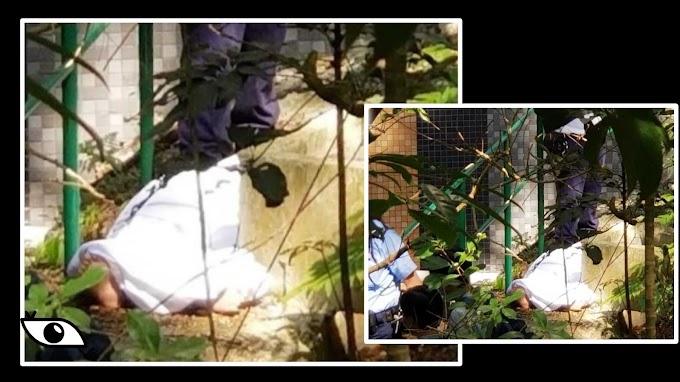 【無可疑】香港恒生大學校舍男生墮斃  警方初判死者疑帶醉自責尋短見